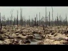 Vyprahnutá a zamorená Zem. Dokumenty, ktoré nás vystríhajú pred úpadkom planéty | Aktuálne.sk
