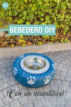 Bebedero para perros ➜ Crea un bebedero para tu mascota con un neumático reciclado y un cuenco de metal. #Mascotas #Neumáticos #Bricolaje #Perros #Reciclaje #Handfie #DIY #Handmade #Proyectos #Crafts #Ideas Dog Water Bowls, Diy Dog Bed, Outdoor Crafts, Dog Crafts, Maltese Dogs, Lap Dogs, Pet Beds, Dog Houses, Dog Accessories