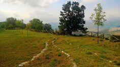 Parco Urbano - La Croce - Carrufo - AQ