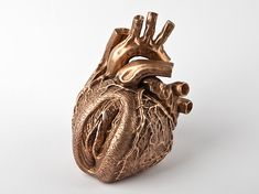 Barbora Mastrlova I Feel It Anatomical Heart Sculpture