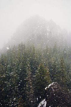Und immer, wenn er ins Tal blickte, stiegen die Erinnerungen dem kühlen Nebel gleich empor, ließen seine Gedanken erblinden  und ihn mit benetztem Gesicht zurück- .November