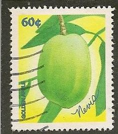 Nevis Scott 1058 Fruit Used - bidStart (item 25968281 in Stamps. Kitts and Nevis) Postage Stamp Art, Going Postal, Stamp Collecting, Flora, Letter Boxes, Lettering, Fruit, St Kitts, Green