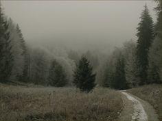 Bükk-fennsík, Hármas-kút, köd (The misty Bükk Plateau, fog)