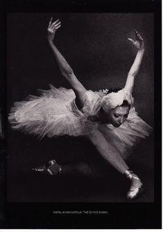 Natalia Makarova in 'The Dying Swan'.  Photo by Max Waldman.