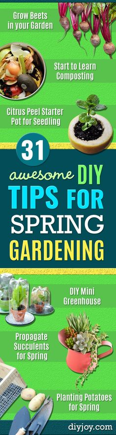 DIY Spring Gardening Projects - Cool and Easy Planting Tips for Spring Garden - Step by Step Tutorials for Growing Seeds, Plants, Vegetables and Flowers in You Yard - DIY Project Ideas for Women and Men - Creative and Quick Backyard Ideas For Summer Diy Garden Projects, Cool Diy Projects, Garden Ideas, Project Ideas, Spring Projects, Garden Crafts, Urban Drawings, Farming, Diy Mini Greenhouse