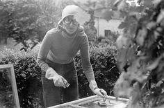 Jørgen Jakobsen, 65, Lyngby. Husarbejde. Vi brugte en god del af ferien det år på at skrabe, slibe og male vinduerne i vores rækkehus (1979).