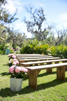Could use hydrangea plants in vintage zinc buckets as pew ends and then move to outside marquee?