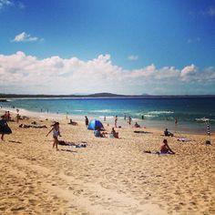 Queensland: Paradies mit Schlange #reiseblog #reiseblogger #australien