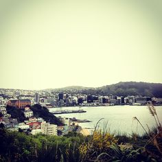 View over Wellington New Zealand