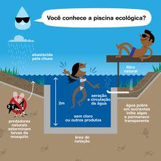 """Inventada na Áustria, a """"piscina natural"""" isola a água da chuva que é filtrada por plantas hidropônicas e madeira nas laterais. Ao combinar uma área para nadar com jardins aquáticos ao redor, essas modernas e rústicas piscinas auto-limpantes só precisam do sistema biológico para purificação e clarificação da água. Em outras palavras, dispensam o uso de todos os produtos químicos ou outros dispositivos. É para mergulhar sem ficar com olhos vermelhos e cheiro de cloro no cabelo."""