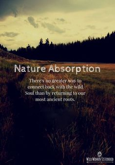 Nature Absorption - There's no greater way to connect back with the wild Soul than by returning to our most ancient roots.. WILD WOMAN SISTERHOODॐ #WildWomanSisterhood #nature #theuniversewithin #earthenspirit #touchtheearth #wanderlust #wildernessculture #wildwomanmedicine #brewyourmedicine