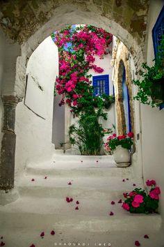 Sidi Bou Said, Tunisia Sidi Bou Said, Tabarka, Thinking Day, Tourist Places, African Countries, Bougainvillea, Mediterranean Style, North Africa, The Good Place