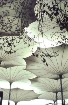 Umbrellas for Pink Floyd's 1977 concert tour of the United States. Image © Atelier Frei Otto Warmbronn