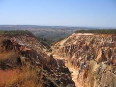 Madagascar :: Ankarafantsika National Park