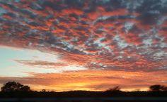 On N1 from Bloemfontein to Winburg #southafrica #southafricaza  #awesomesouthafrica  #instagramsa  #cityofbloemfontein  #igglobalwomenclub #ig_shutterbugs_nature #allnatureshots @igglobalwomenclub  @instagram_sa  @instagram @cityofbloemfontein @super_americas_  #hayatakarken  #star_of_today #allnatureshots #arte_of_nature #ig_shutterbugs_nature #igsharepoint #igworldclub #igworldclub #iggloballife by dithuso_d2so