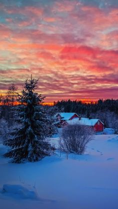 Beautiful Sunset over snow-covered ground ~ Winter Sunset, Winter Scenery, I Love Winter, Winter Time, Winter Night, Winter Magic, Photos Voyages, Snow Scenes, Winter Beauty