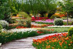 Csupán három szombaton látogatható a csodálatos magánkert.