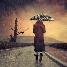 Guarda - Chuva