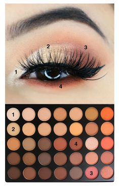 Ideas For Eye Shadow Tutorial Morphe 350 - Make up Tips - Eye Makeup Light Eye Makeup, Makeup Eye Looks, Eye Makeup Steps, Simple Eye Makeup, Natural Makeup, Natural Eyeshadow Looks, Neutral Eye Makeup, Elegant Makeup, Glamorous Makeup