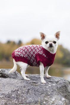 Når kulda setter inn trenger mange kjæledegger også noe varmende plagg. Denne fine genseren kan vel også bli en flott gave til den firbente vennen?