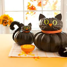 No carve pumkin kitty.  We did these last year and they turned out super cute.