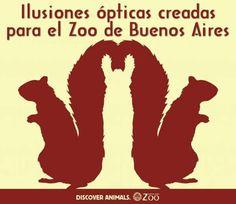 Ilusiones ópticas con animales #ilusionesópticas