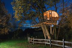 10 Of The World's Most Amazing Tree Houses - Baumraum, Andreas Wenning, Between Alder and Oak, Osnabrück (Germany) Cool Tree Houses, Tree House Designs, Fairytale Castle, Diy Holz, In The Tree, Oak Tree, Prefab, Play Houses, Architecture