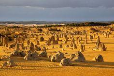 Le désert des Pinnacles, en Australie occidentale, est une étendue aride ponctuée de menhirs naturels. Les plus hautes pierres dépassent les 3 mètres. C'est l'érosion qui est à l'origine de ce paysage surnaturel.