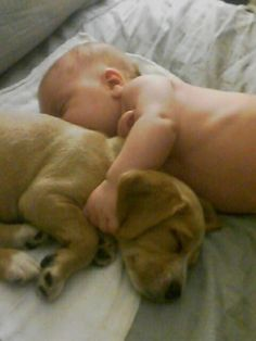 Baby & Puppy napping