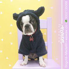 Wawaw Ropa para perros y gatos en Colombia #Cat #Dog Pet clothes accesories