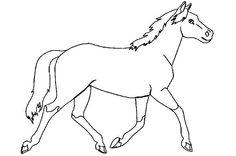 paard kleurplaat - Google zoeken