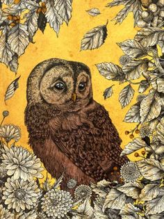 A charming hoot owl canvas art print With colors in yellow and brown with leaves and flowers for accents. Created by artist Angela Rizza. Yellow Tapestry, Wall Tapestry, Owl Canvas, Canvas Art Prints, Tawny Owl, Yellow Art, Owl Art, Cool Paintings, Vivid Colors