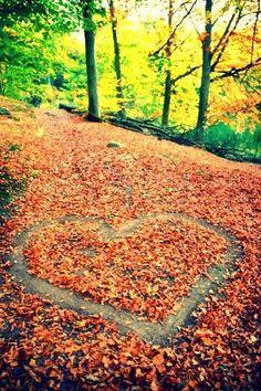 Cette photos représente une foret en automne avec les feuilles de couleurs qui sont tombé dans les quelles sont tracé un coeur. En voyant cette photo je me suis dit qu'elle représentait bien l'amour, avec ces feuilles rouges, oranges, jaunes et vertes. Le soleil qui transperce les feuilles amène beaucoup de luminosité a la photo. Je croit que si on devait nommer ce sentier, il s'appellerais...Le chemin de l'amour