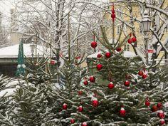 München versinkt im Schnee. Überall in der Stadt türmen sich meterhohe Schneehaufen, die Dächer sind weiß und der Winterdienst ist im Dauereinsatz. Es wird fleißig Schnee geschaufelt, die Außenbestuhlung der Cafés kann man nur noch erahnen. Aber den meisten Münchnern gefällt die weiße Winterlandschaft – vor allem natürlich den Kindern!
