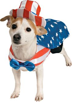 Patriotic Gear for Pets! #pets #july4th