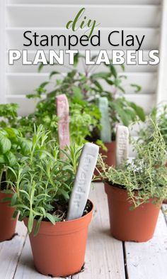 Charmant DIY Herb Garden Markers With Air Dry Easy Sculpt Clay