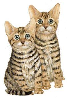 """Kittens"" - Illustration by Fiammetta Dogi"