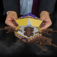 "Check out this amazing Chocolate Frog Mold to help you to cook your own official chocolate frogs!The perfect ""Muggle"" version of Honeydukes' Chocolate Frogs."