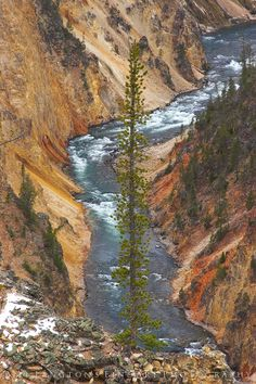 Artist's Point, Yellowstone National Park...