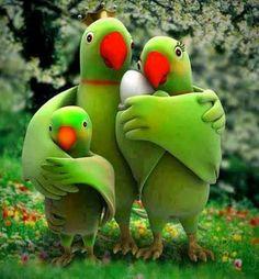 A Little Cute Parrot Family Cute Family, Beautiful Family, Happy Family, Family Family, Beautiful Birds, Family Photos, Gato Animal, Gifs, Cute Unicorn