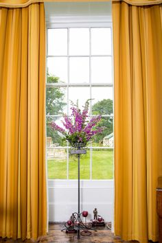 Foxgloves in the dining room window