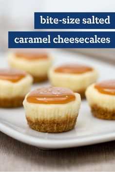 A touch of salt adds an irresistible complexity of flavor to these adorable Salt.A touch of salt adds an irresistible complexity of flavor to these adorable Salted Caramel Mini Cheesecakes. Trust us: This will be the first dessert to vanish at you Party Desserts, Mini Desserts, Delicious Desserts, Dessert Recipes, Yummy Food, Holiday Desserts, Bite Size Desserts, Recipes Dinner, Dinner Ideas