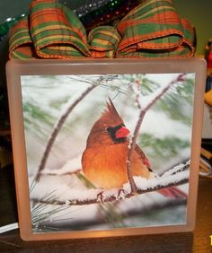 Golden Cardinal Glass Block Light by Eworx on Etsy, $25.00