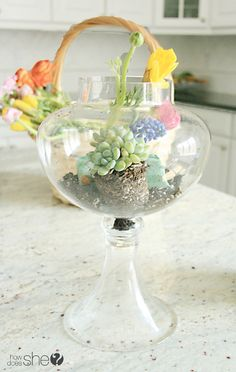 DIY and Crafts. DIY Floral Terrariums from  howdoesshe.com