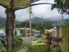 Puerto Rico Jayuya 2  