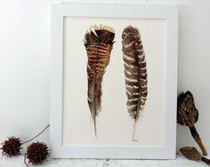 I have always l<3ved Featherz!! Wild Turkey Feathers Eco Friendly Print 8x10 by bramblepie on Etsy, $22.00