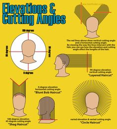 Hair cutting elevation and angles graphic