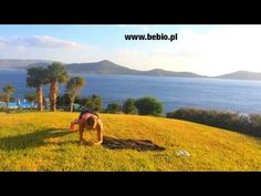 Top 5 - Ewa Chodakowska - Core Training - YouTube