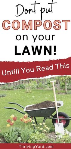 Did you know that compost can burn your lawn? Yes! Compost can improve soil, lawns and improve many garden issues. But it has the ability to be harmful to plants. Read more on when and why this happens. Recognize the warning signs and how to fix the problem easily. See our lawn care and gardening advice here. Compost Mulch, Worm Composting, Gardening For Beginners, Gardening Tips, Making A Compost Bin, Types Of Mulch, Lawn Care Tips