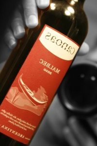 Review of the 2010 Canoas Malbec